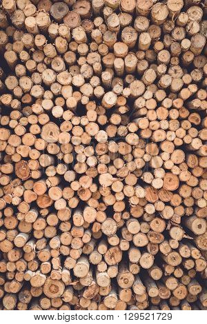 Stacked Of Wood Log  For Construction Buildings Background