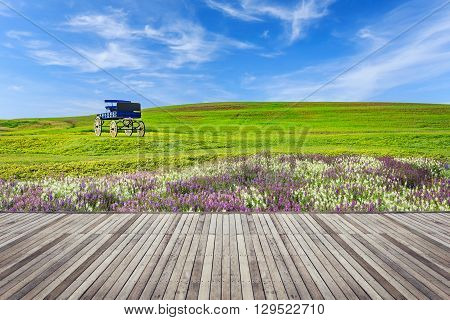 Old Wooden Flooring And View Of Nature