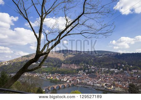 View to Heidelberg city from Philosphenweg hill