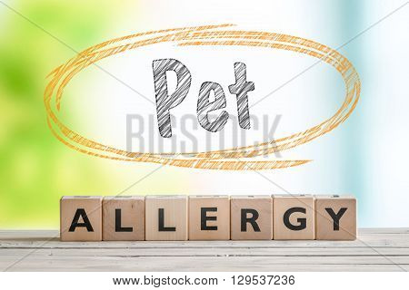 Pet Allergy Sign On A Wooden Desk