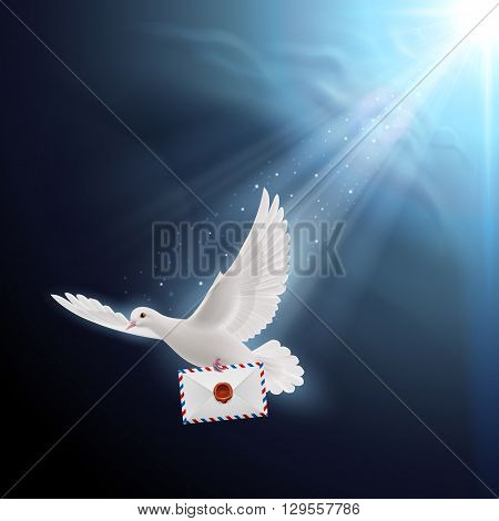 Pigeon fly with letter in beak on dark background