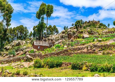 View of the hill at Taquile island in Lake Titicaca near City of Puno Peru