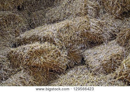 Rural barn full of straw for animal feed.