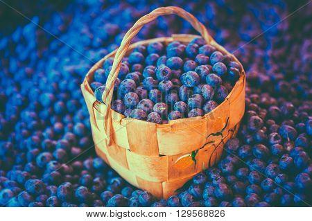Fresh Blue Berries Blueberries Blueberry At Market In Wicker Basket