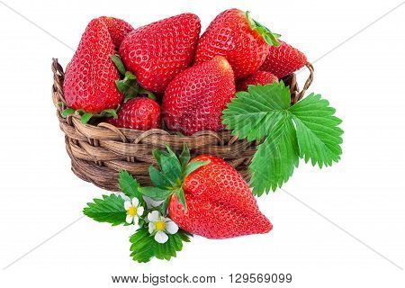 Basket of strawberries closeup. Isolated on white background.