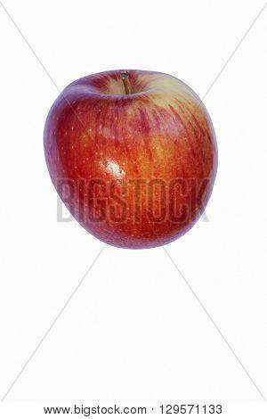 Braeburn apple (Malus domestica Braeburn). Hybrid between Granny Smith apple and Lady Hamilton apple. Image of single apple isolated on white background