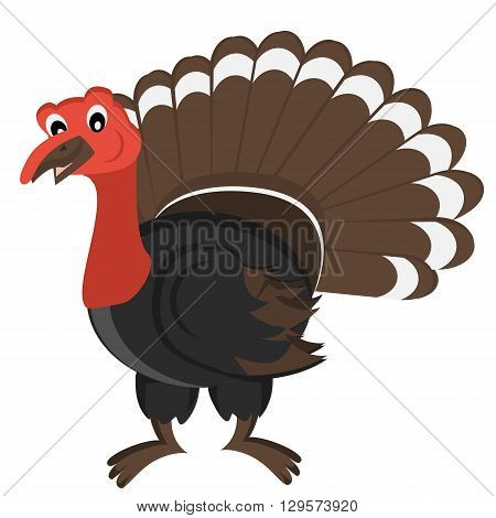 Cartoon gobbler. Vector Illustration. Isolated turkey on white background