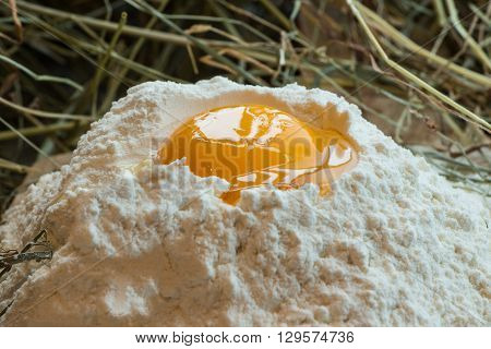 Yolk in flour on a background of hay