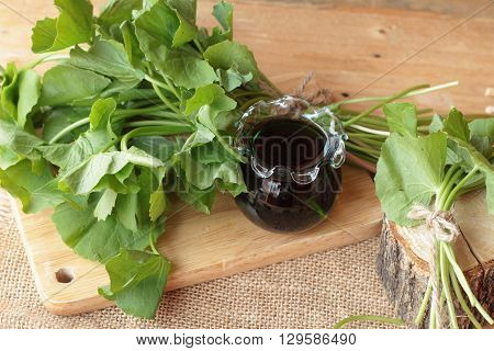 Asiatic juice and centella asiatica for health