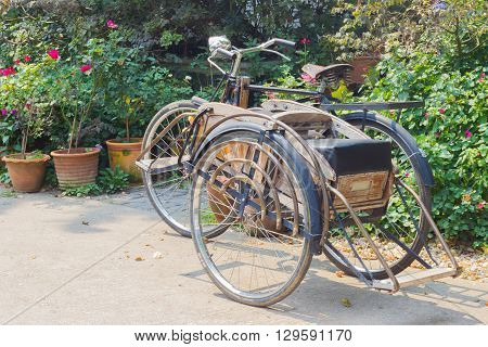 CHIANG RAI THAILAND - APRIL 25 : classic wheeler Tricycle bicycle in the fresh garden on April 25 2016 in Chiang rai Thailand