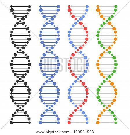 DNA Genome Molecules Set on White Background. Vector illustration