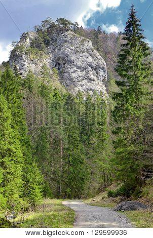 Blatnicka dolina in Velka Fatra range Slovakia