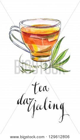 Cup Indian black tea with leaves from Darjeeling hand drawn - watercolor Illustration