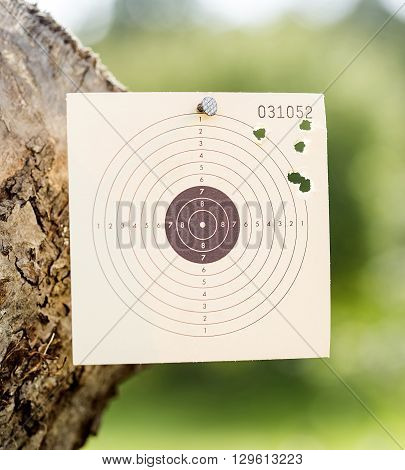 Somebody was shooting at a paper rifle target.