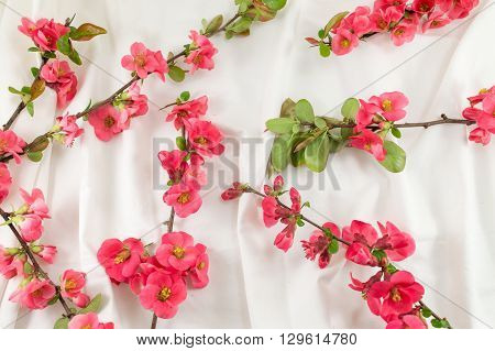 Rosa Rugosa Flowers On White Fabric