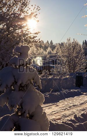 Winter village. Sunny day in the countryside