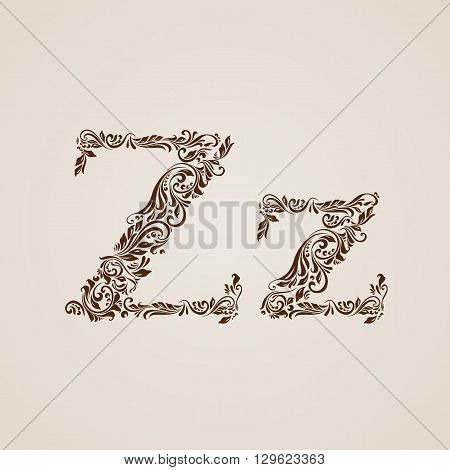 Handsomely decorated letter z in upper and lower case.