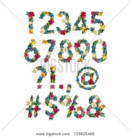 Numbers, Vector Colorful Flower Font For Your Design. Floral numbers on white background. Isolated. Punctuation marks.