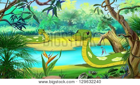 Green Anaconda - the largest Snake. Digital painting full color illustration.