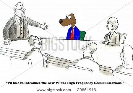 Business cartoon about a new VP for High Frequency Communications.