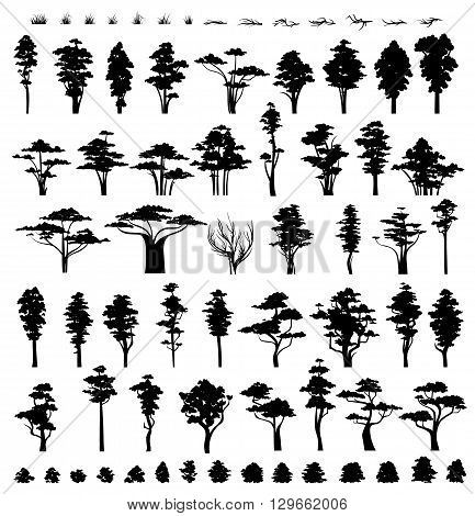 Trees silhouettes isolated on white background.  Nature trees. Grass and bushes . Collection vegetation trees bushes and grass .