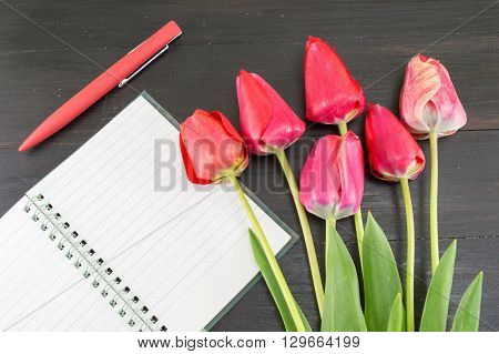 Red Tulips And A Notebbok