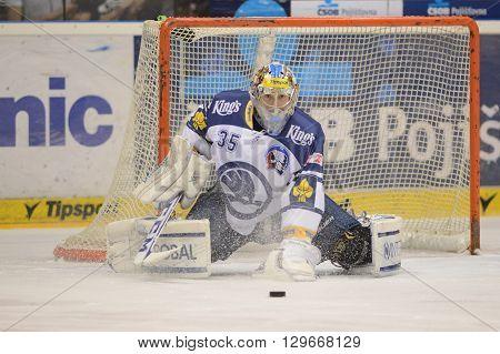 Pardubice 16/01/2015 _ Goalkeeper Matej Machovsky _ 38.round of highest Czech ice hockey league between HC CSOB Pojistovna Pardubice and HC Skoda Plzen