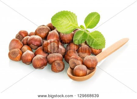 Hazelnut and fresh mint leaves isolated on white background