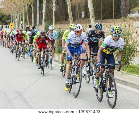 Barcelona Spain - March27 2016: The Colombian cyclist Nairo Quintana of Movistar Team riding in the peloton during Volta Ciclista a Catalunya on the top of Montjuic in Bracelona Spain on March 27 2016. Quintana was te winner of the race.