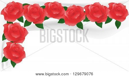 Red roses on white fabric. Flower background.
