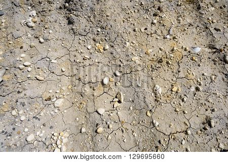 Dry Mud And Pebbles Background