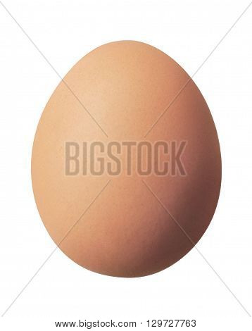 Brown egg, breakfast egg or cooking ingredient, isolated on white background