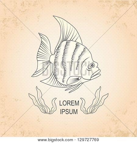 Vintage sea background. Hand drawn sketch seafood vector illustration of fish halibut.It is flounder fish.