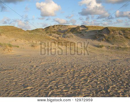 Dunes In Neringa, Lithuania