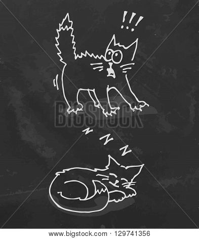 Set of sleeping and scared cat. Chalk board illustration