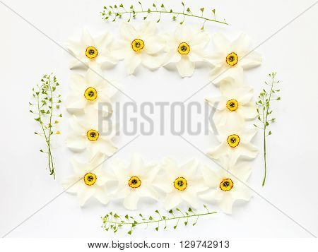 Floral Border Of Fresh Narcissus Flowers And Hepherd's Purses On White. Flat Lay, Top View.
