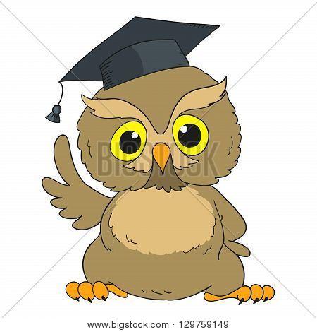 Smart owl. Cartoon character graduation owl. Vector