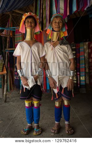 CHIANG MAI, TAILAND - APRIL 22, 2016: A portrait of a women from Kayan Lahwi tribe known for wearing neck rings, brass coils to extend the neck. Kayan, Red Karen (Karenni).
