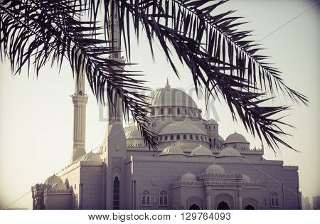 A beautiful mosque. View through blur palm leaves at the foreground.