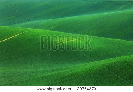 Minimalistic Landscape With Green Fields, Rolling Hills At Sunrise