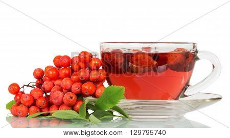 Rowan berries and a cup of tea with wild rose isolated on white background.