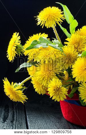 Original festive bouquet of dandelions in a red hat on a dark wooden table. Vertical
