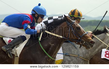 Horse race for the prize Sravnenia in Pyatigorsk,Caucasus,Russia.