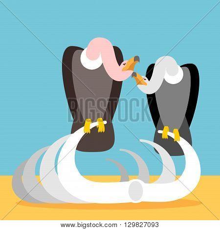 Vultures On Skeleton Remains. Griffon Sitting On Edges. Bird Scavenger Desert