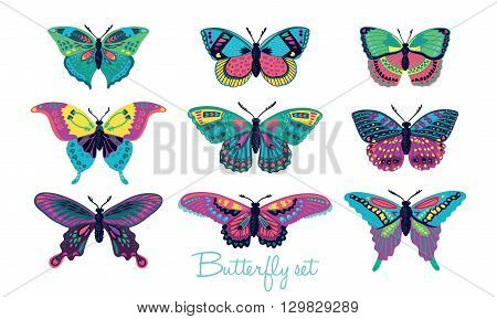 Colorful butterflies vector collection. Vector butterfly set. Butterfly colorful different types. Butterfly silhouette isolated on white background