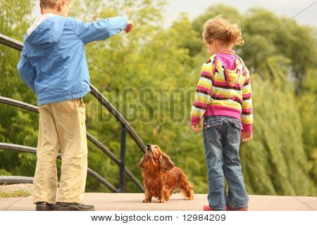 Children with dachshund outdoor poster