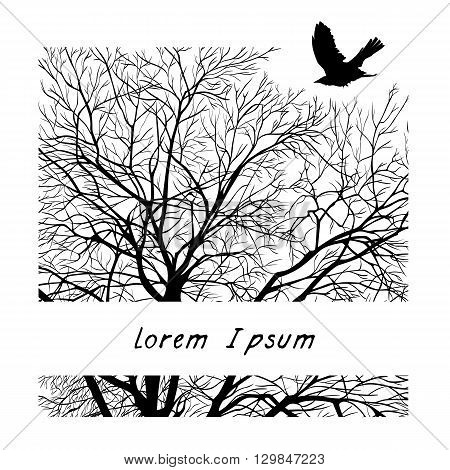 minimalistic cropped image of a winter tree in the square. design element for cards, simple concise illustration, title design.