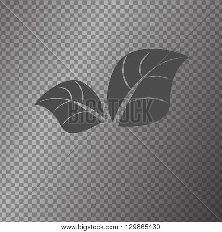 vector icon flower symbol isolated illustration graphik