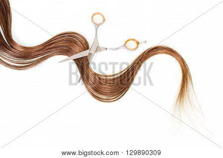 Hairdressing scissors with lock of brown hair isolated on white