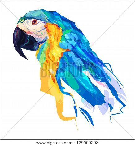 The parrot head on white background. Retro design graphic element. This is illustration ideal for a mascot and tattoo or T-shirt graphic. Stock illustration